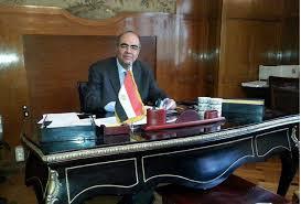 Mohamed Alaaeldin Aly Shawky Elhadidi